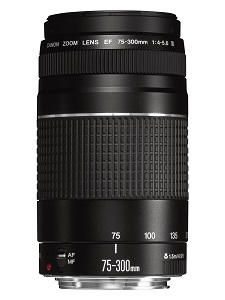 1.1 Canon EF 75-300mm